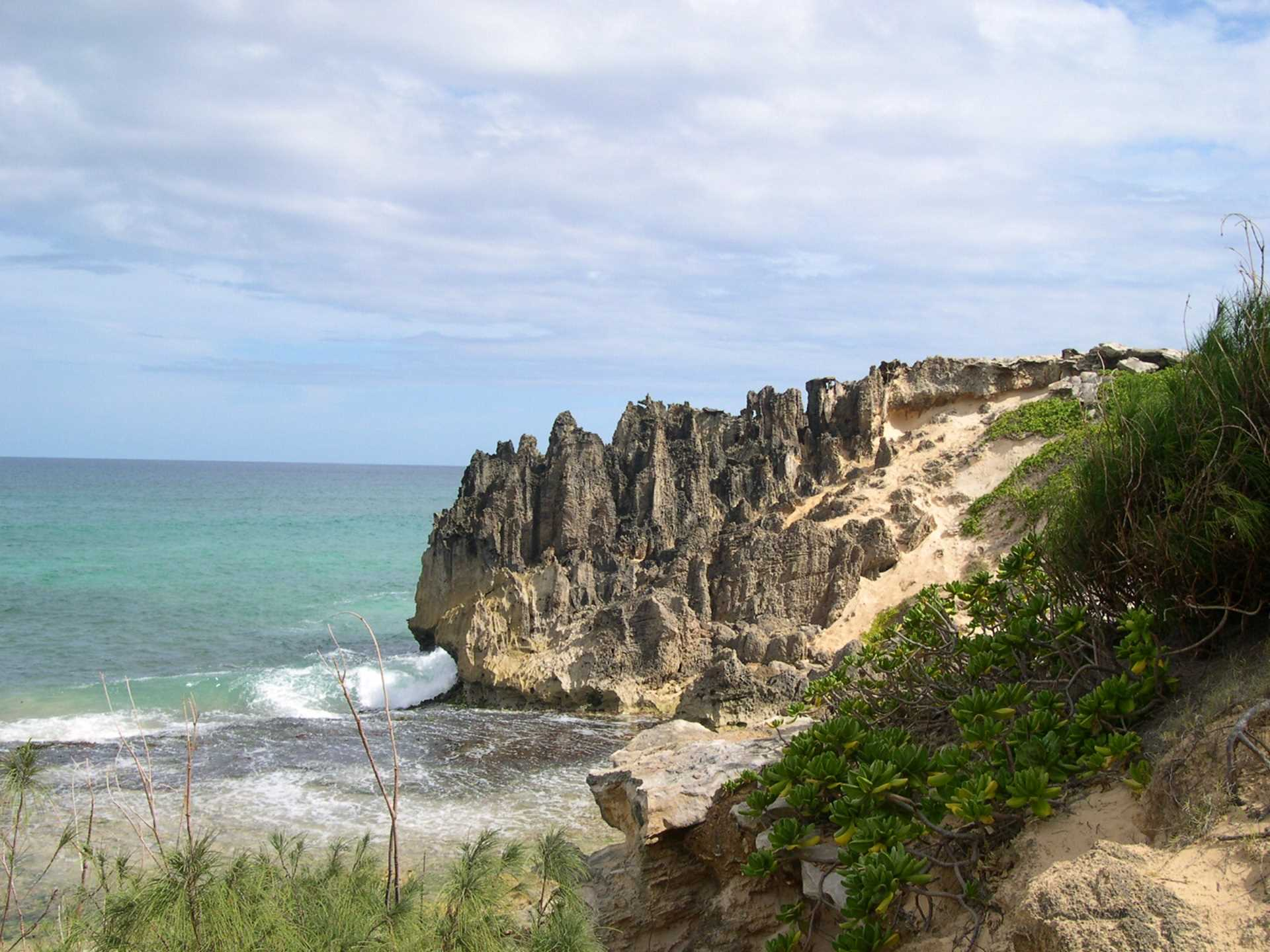 Lithified cliffs near Maha'ulepu